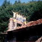 In-drum-spre-Muntele-Gaina-800x600