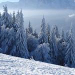 medii-peisaje-iarna-12
