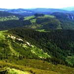 muntii-bihorului-3