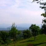 muntii-codru-moma-3