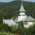 sfantul-sava-berzunti-(27)