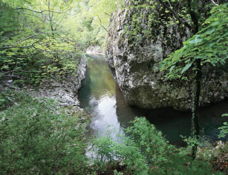 Parcul National Semenic Cheile Carasului3