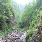 Rezervatia-Cheile-Caprei-(Cheile-Fenesului)-20110127093516