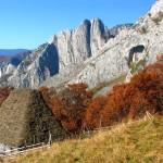Rezervatia-geobotanica-Scarita-Belioara-20110623121331