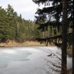 Rezervatia-naturala-Padurea-Lacurile-20120612114751