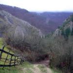 cheile_geogelului-foto