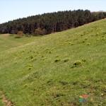 dealul-lempes-sanpetru