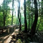 parc-natural