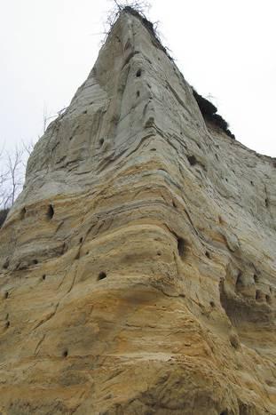 rezervatia locul fosilifer zabalt_lipova