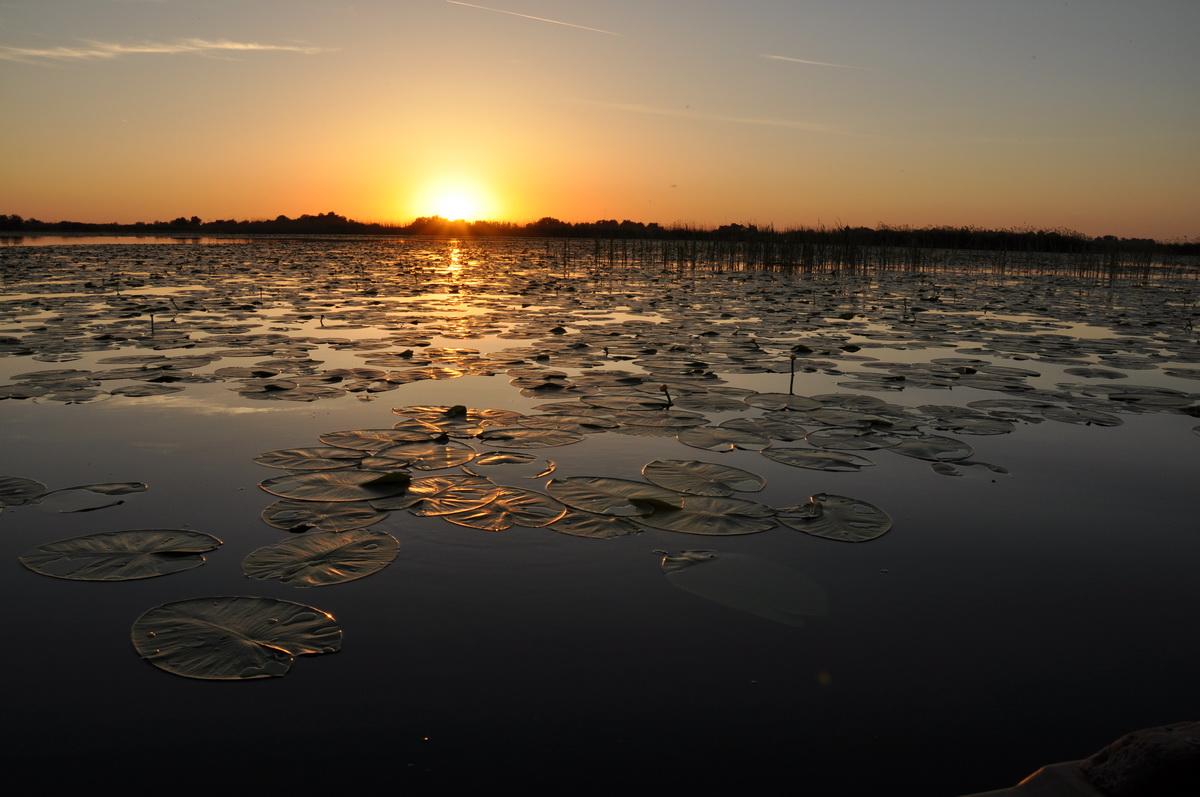 062-Lacul-Potcoava-Delta-Dunarii_resize