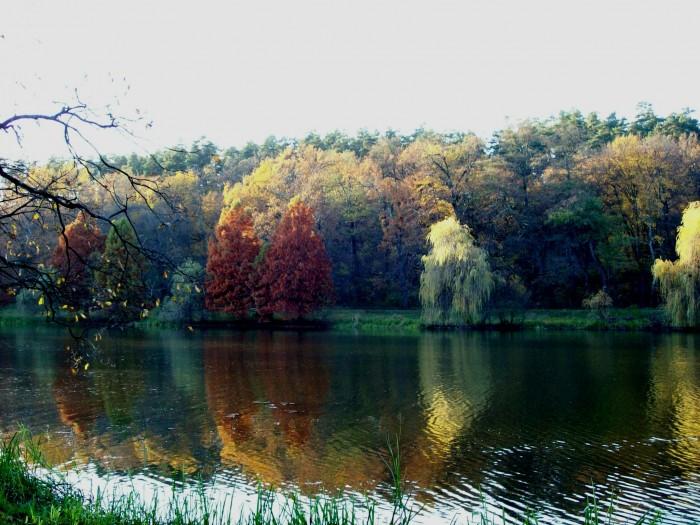 Parcul-Natural-Dumbrava-Sibiului-20110211151707