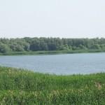 Parcul-Natural-Lunca-Joasa-a-Prutului-Inferior-20110121124927