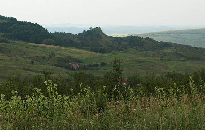 Rezervatia-Fanetele-Clujului-20101129163030