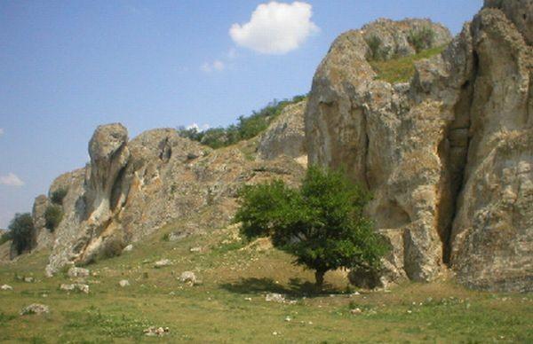 Rezervatia-Naturala-Masivul-Cheia-20110208113537