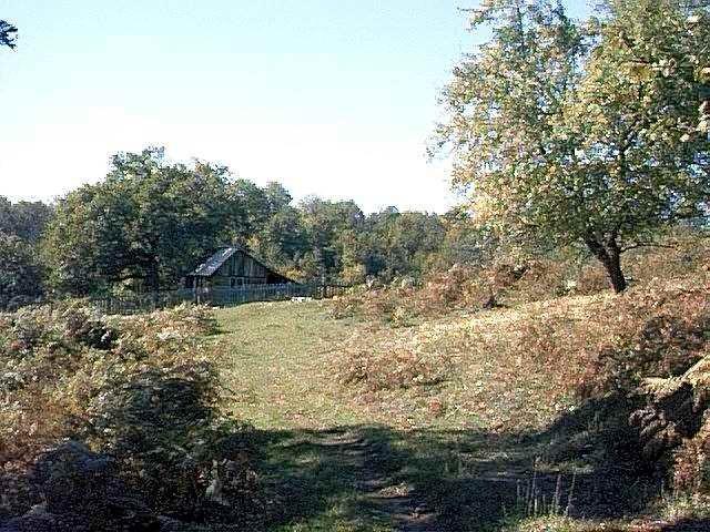 Rezervatia-naturala-Cornetul-Pocruiei-20120626173038