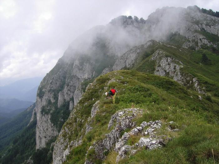 Rezervatia-naturala-Piatra-Closanilor-20101104132139