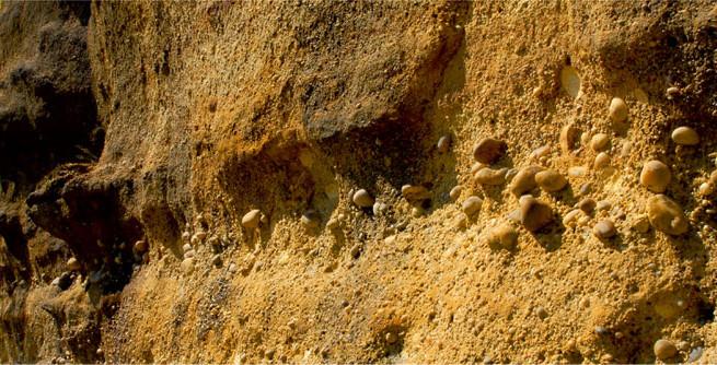 locul-fosilifer-vama-strunga-655x334
