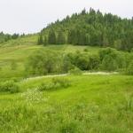 paraul_dobreanu