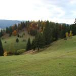 paraul_dobreanu1