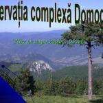 rezervaia-domogled-1-728