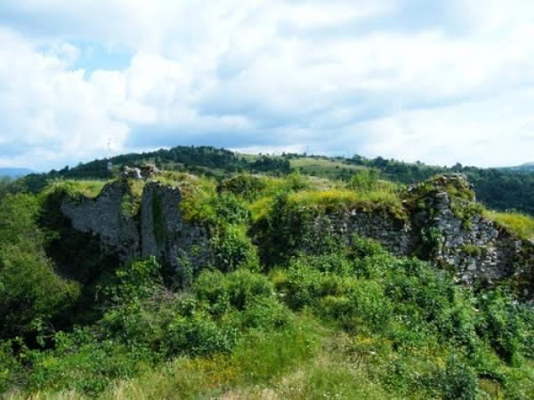 cetatea_carasova