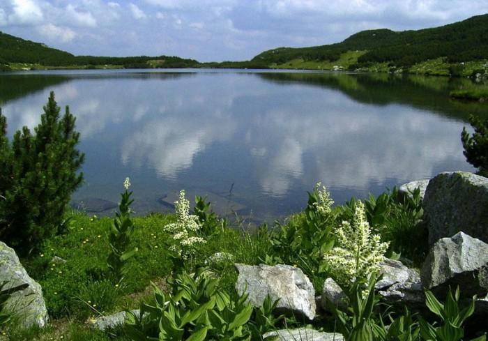 Lacul-Calcescu-(circul-Galcescu)-20110207115829