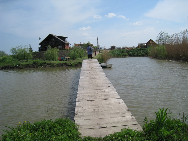 Parcul Natural Comana (4)