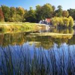 Parcul-Natural-Lunca-Muresului-630x472