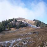 Rezervatia-naturala-Fanetele-montane-Todirescu-20110204180551