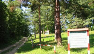 Rezervatia-naturala-Padurea-Cenaru-20110117175449