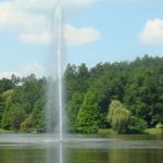 lacul dumbrava 2