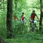 trasee-biciclete-padurea-verde-2