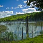 05-drumetie-lacul-cuejdel