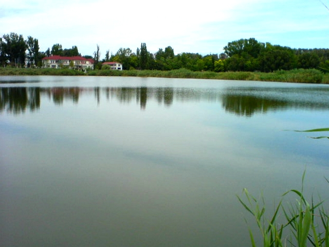 29317_lacul-amara-5