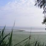 Lacul-Oltina-20110208134540