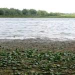 Lacul-Vlascuta-20110810113935