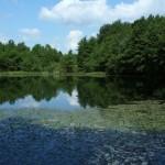 Lacul_Morarenilor2