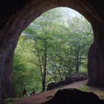 Portal-Meziad