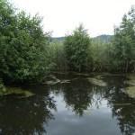 lacul_rat4