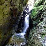 rezervatia-izvorul-albastru-al-izei-muntii-rodnei-11