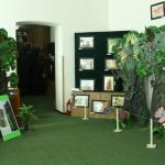 01-muzeu-stiinte-naturale-roman