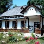 Muzeul-satului-Valcean-din-Bujoreni-20110124170825