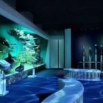 Muzeul_National_de_Istorie_Naturala_Grigore_Antipa