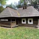 case Moldovita_0