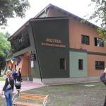 muzeu-roman