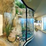 muzeul-de-istorie-naturala-sibiu-3-b-01