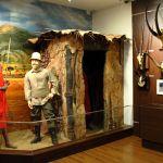 muzeul-de-vanatoare-sibiu