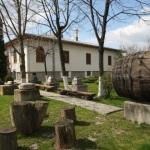 muzeul_viei