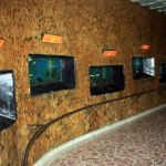sala_acvariilor_1