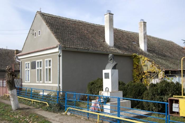 Casa-Memoriala-Aurel-Vlaicu-20101215150217
